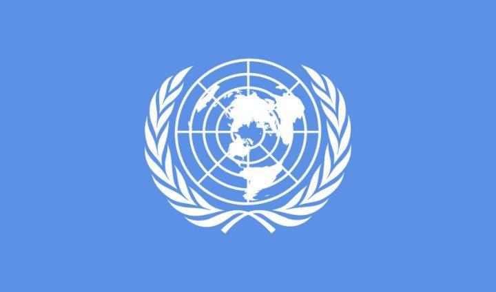 联合国训练研究所是一个怎样的机构?